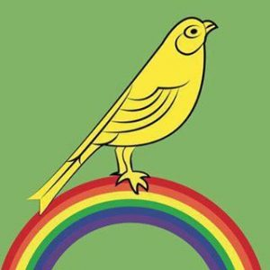 proud-canaries